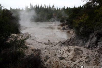 Die Mud Pools