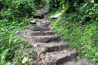 Der Wanderweg zurück nach Aguas Calientes