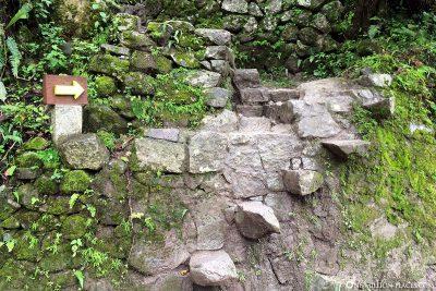 Die Treppen zum laufen