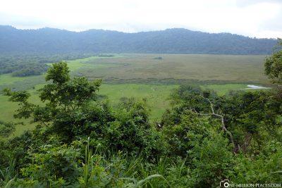 Ngurdoto Crater