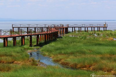 The jetty to the lake