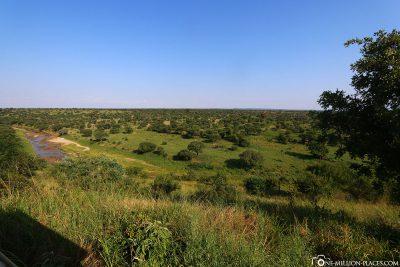 The vast plains of the park
