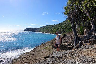 Der Weg entlang der Küste