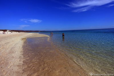 The Turquoise Bay