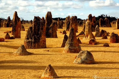 The Pinnacles Desert