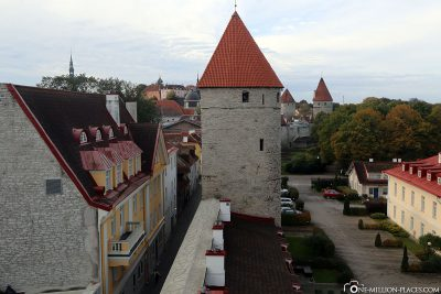 The view from the tower to the city wall