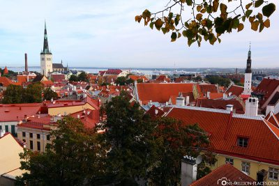 View from the Domberg