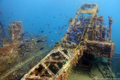 Wreck diving on the cargo ship Veronica L