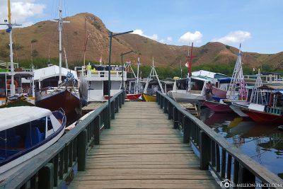 Arrival on Rinca Island