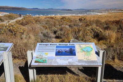 Blick auf den Mono Lake