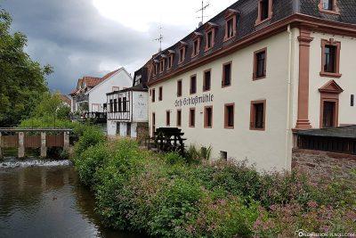 Die Mümling in Erbach