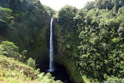 Die Akaka Falls auf Big Island in Hawaii