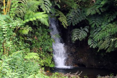 Another small waterfall in the park