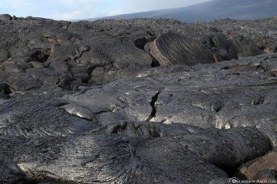 The lava fields of Kalapana