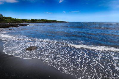 Eine grüne Meeresschildkröte am Black Sand Beach