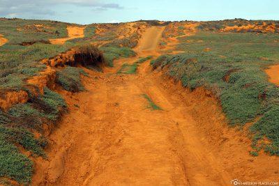 Der Weg für die Pickups und zum Wandern
