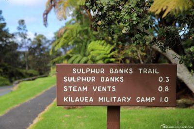 The Sulphur Banks Trail