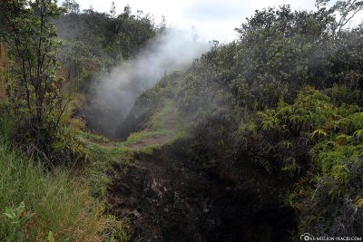 Steam rises everywhere