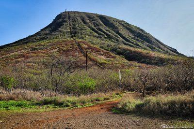 Der 192 Meter hohe Koko Krater