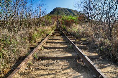 Die alten Eisenbahnschienen
