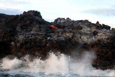 Die Lava auf ihrem Weg zum Meer