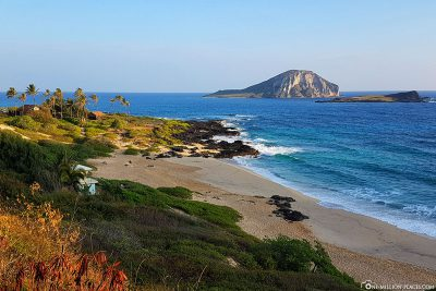 Der Makapu'u Beach