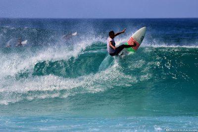 Surfen an der North Shore von Oahu