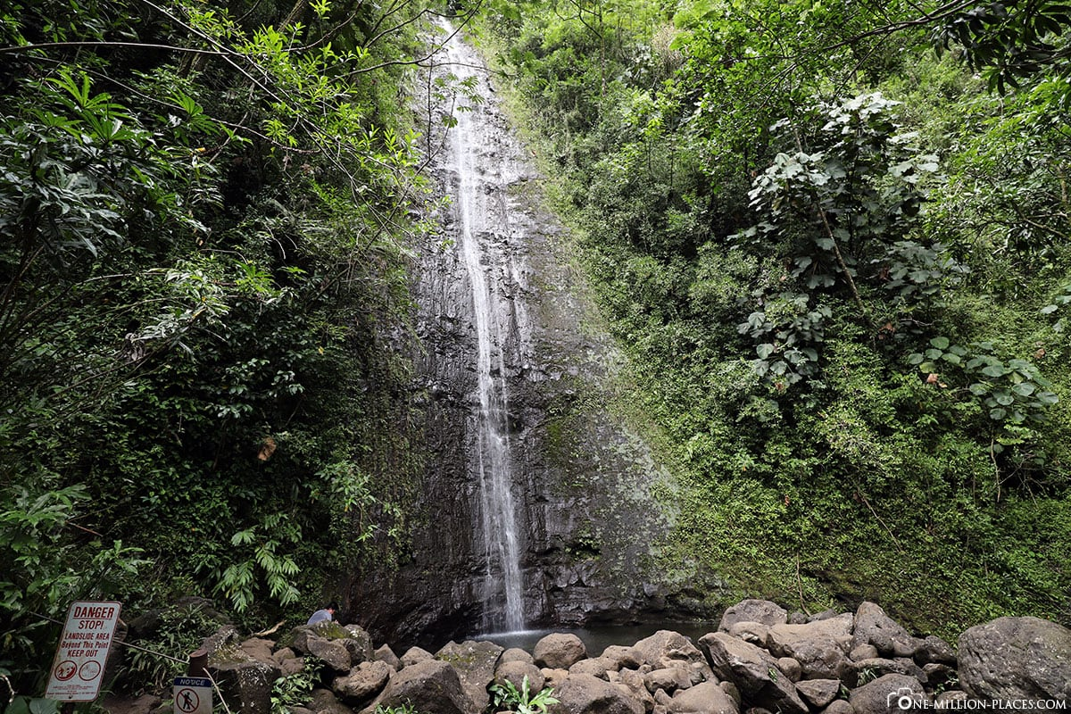 Manoa Falls, Honolulu, Hawaii, USA, TravelReports, Photo Spot