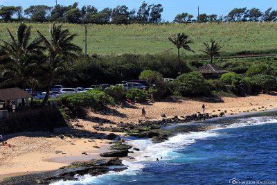 The beach at Ho'okipa Beach Park