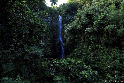 The Paihi Waterfalls