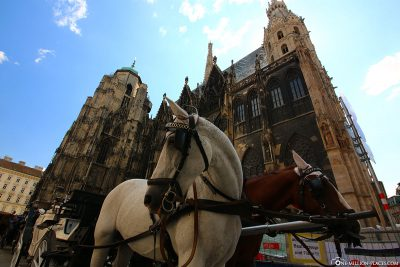 Fiaker at St. Stephen's Cathedral