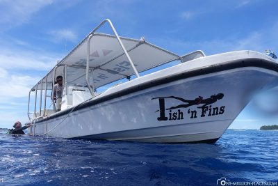 Diving in Palau with Fish 'n Fins