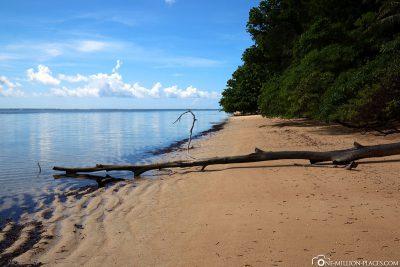 The Orange Beach of Peleliu