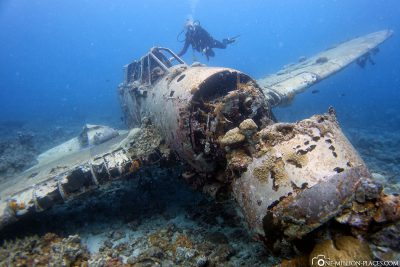 Ein Flugzeugwrack in Palau
