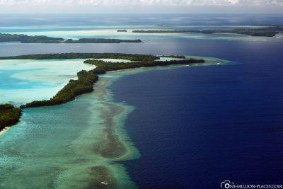 The beautiful reef in Palau