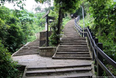 The stairs to Elephant Mountain