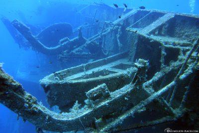 The wreck of Zenobia