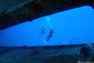 Diving at the wreck of Zenobia