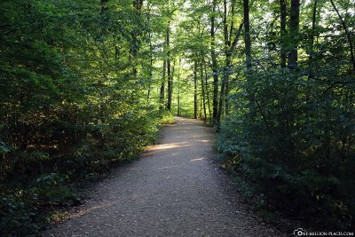 The footpath to Eltz Castle