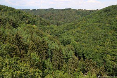 Der Blick ins Tal