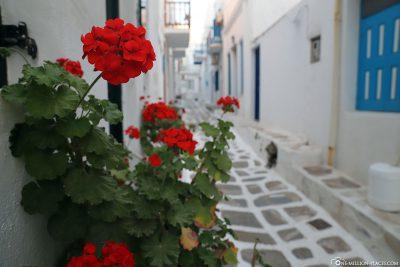 Die Gassen von Mykonos