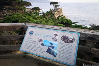 Info board at the Lonely Cypress