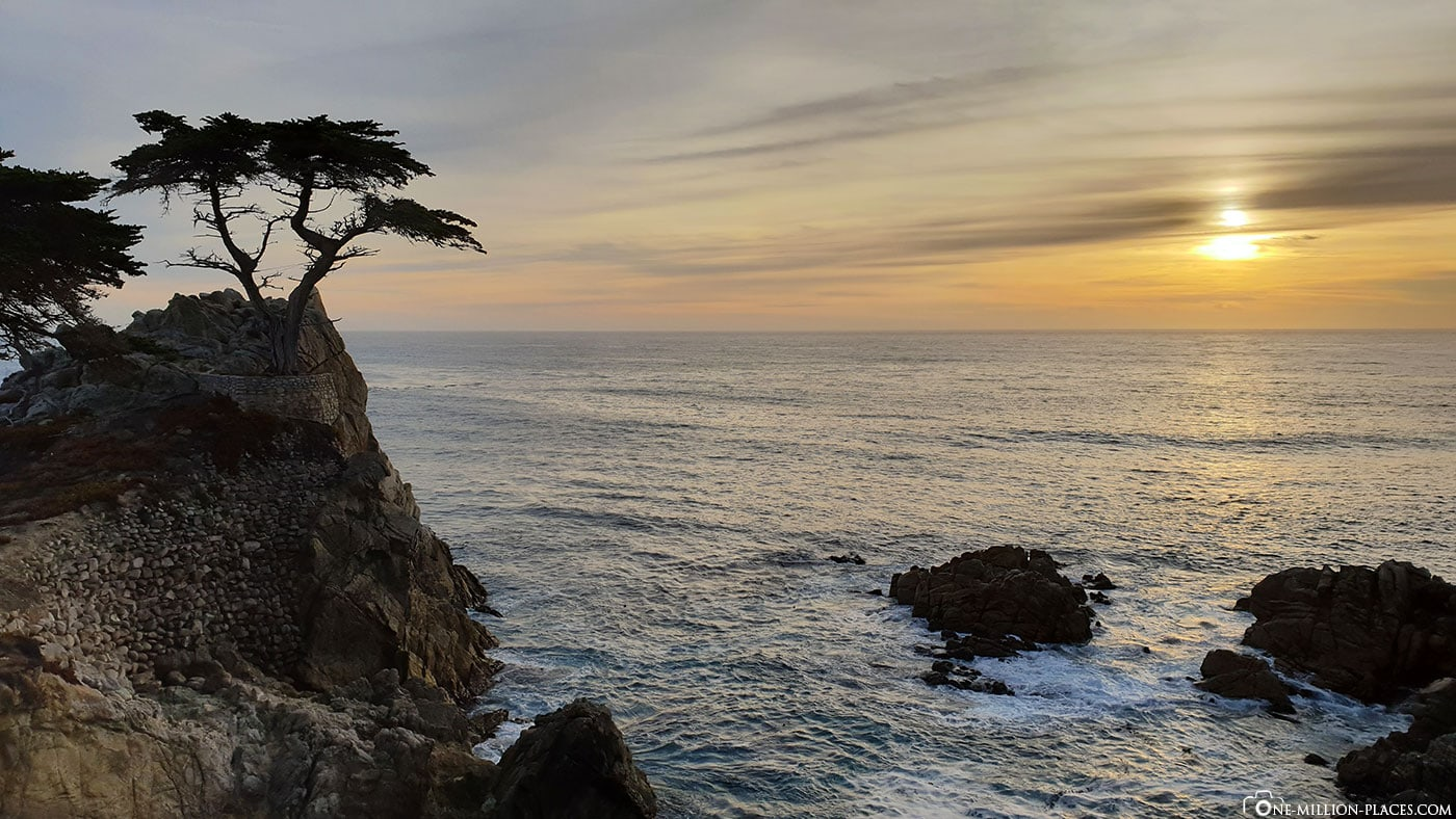 The Lone Cypress, Sundown, 17 Mile Drive, Fotospot, Monterey, Pebble Beach, Scenic Tour, California, USA, Travel Report