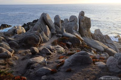Rock formations at Pescadero Point