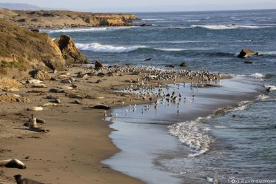 The coast at Vista Point
