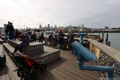 Die Aussichtsplattform für die Seelöwen