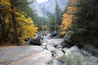 The creek of the Merced River