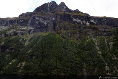 Die steil abfallenden Felshänge im Geirangerfjord