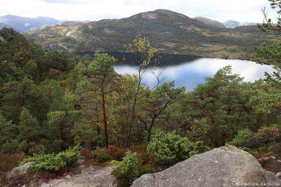 Blick auf den See Revsvatnet