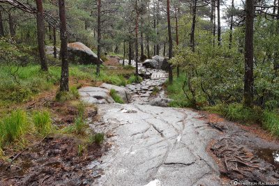 The rocky hiking trail